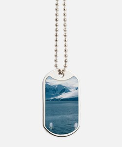 Humpback whales exhaling Dog Tags