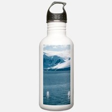 Humpback whales exhali Water Bottle