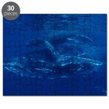 Humpback whales Puzzle