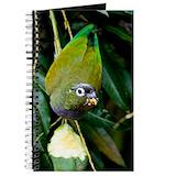 Pionus Journals & Spiral Notebooks