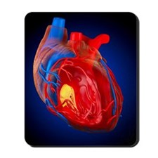Structure of a human heart, artwork Mousepad
