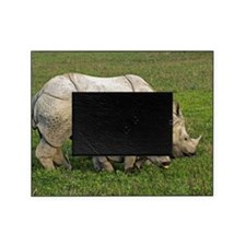 Indian rhinoceroses Picture Frame