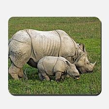 Indian rhinoceroses Mousepad