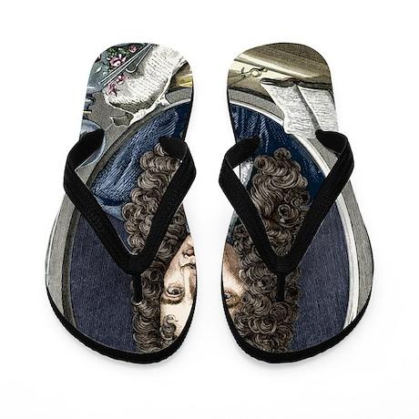 Robert Boyle, Irish chemist Flip Flops