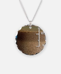 Soil analysis Necklace
