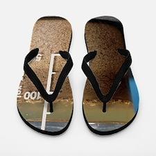 Soil analysis Flip Flops