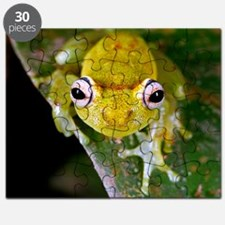 Tropical frog Puzzle
