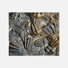 Trilobite fossils Throw Blanket