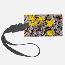 Stonecrop 'Cape Blanco' Luggage Tag