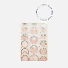 Vertebrate embryonic devel Keychains