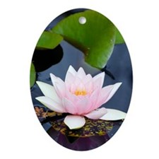 White water lily Oval Ornament