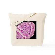 Testis blood vessels, SEM Tote Bag