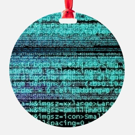 Internet computer code Ornament