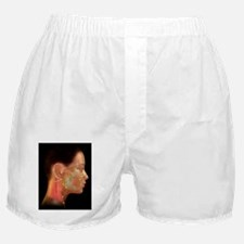 Acupuncture points Boxer Shorts