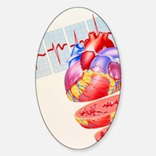 Artwork of heart Decal