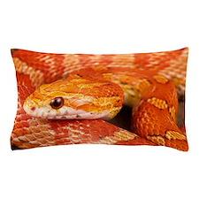 Corn Snake  Pillow Case