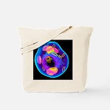 Animal cell, artwork Tote Bag