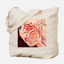 Artwork of ear, nose Tote Bag