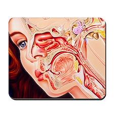 Artwork of ear, nose Mousepad