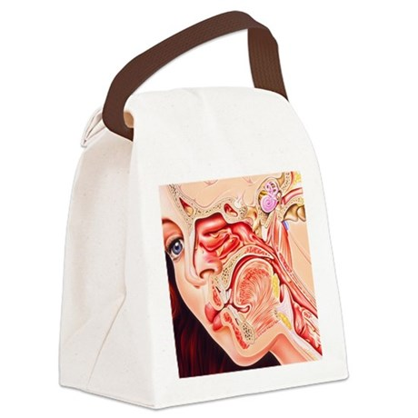 Artwork of ear, nose Canvas Lunch Bag