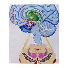 Artwork of brain areas in Parkinson' Throw Blanket