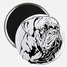 Dogue De Bordeaux. Magnet