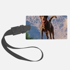 Lovable Chocolate Lab Luggage Tag