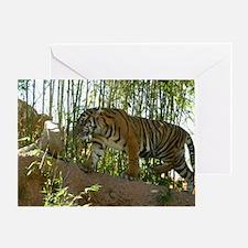Sumatran Tiger on the prowl Greeting Card