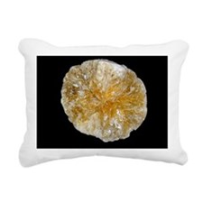 Gallstone Rectangular Canvas Pillow