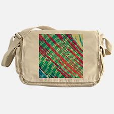 Cardiac muscle, TEM Messenger Bag