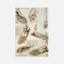 Foot anatomy by Leonardo da Vinci Rectangle Magnet
