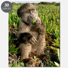 Juvenile chacma baboon Puzzle