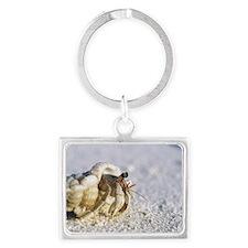 Juvenile land hermit crab Landscape Keychain
