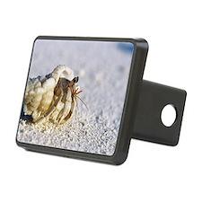 Juvenile land hermit crab Hitch Cover