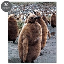King penguin chicks Puzzle
