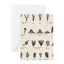 Features of fingerprints Greeting Card