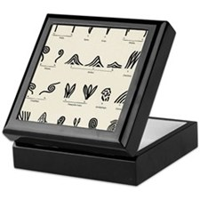Features of fingerprints Keepsake Box