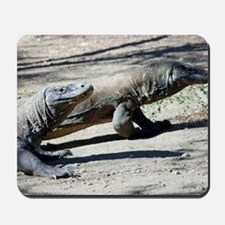 Komodo dragons Mousepad
