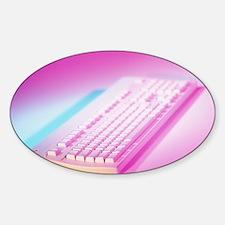 Keyboard from an Apple MacIntosh co Sticker (Oval)