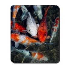 Koi carp in a pond Mousepad