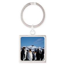 King penguins Square Keychain