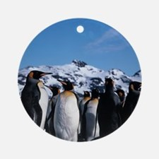 King penguins Round Ornament