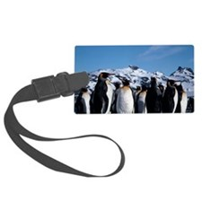 King penguins Luggage Tag