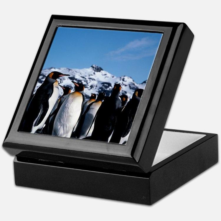 King penguins Keepsake Box
