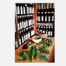 Herbal pharmacy Postcards (Package of 8)