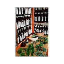 Herbal pharmacy Rectangle Magnet