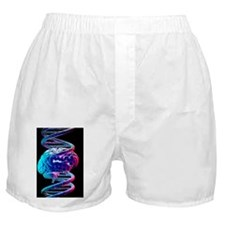 Brain and DNA Boxer Shorts
