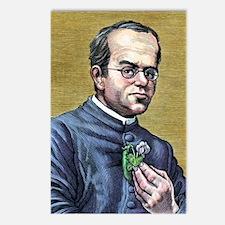 Gregor Mendel, Austrian b Postcards (Package of 8)