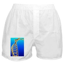 DNA helix Boxer Shorts