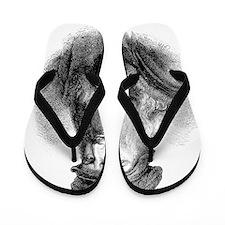 Leonardo da Vinci, Italian artist Flip Flops